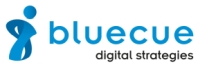 bluecue consulting GmbH & Co. KG Logo
